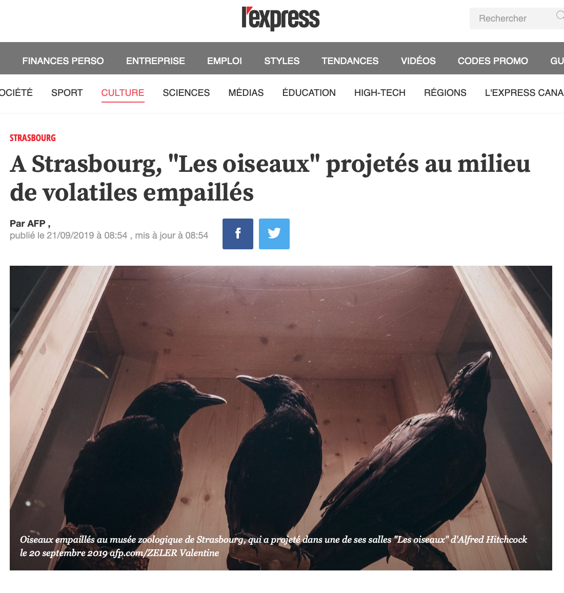 Parution dans l'Express Web du 20 septembre